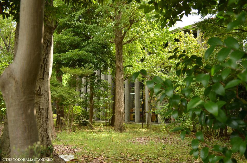 kenritutoshokan-the yokohama standard