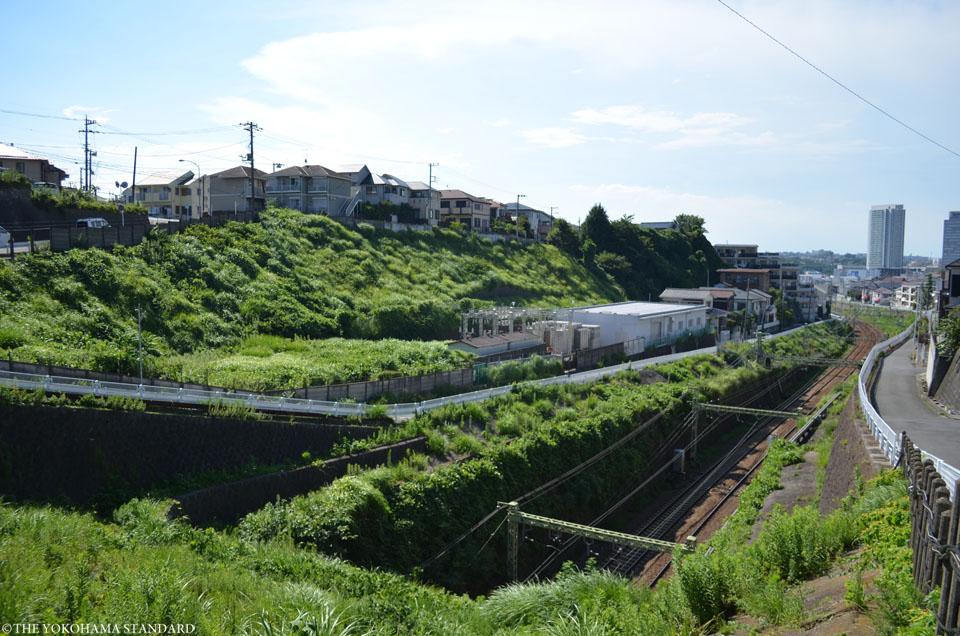 森が丘のトンネル1-THE YOKOHAMA STANDARD