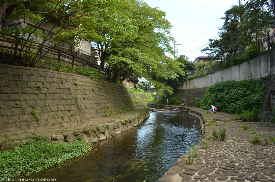 大岡川プロムナード5-THE YOKOHAMA STANDARD