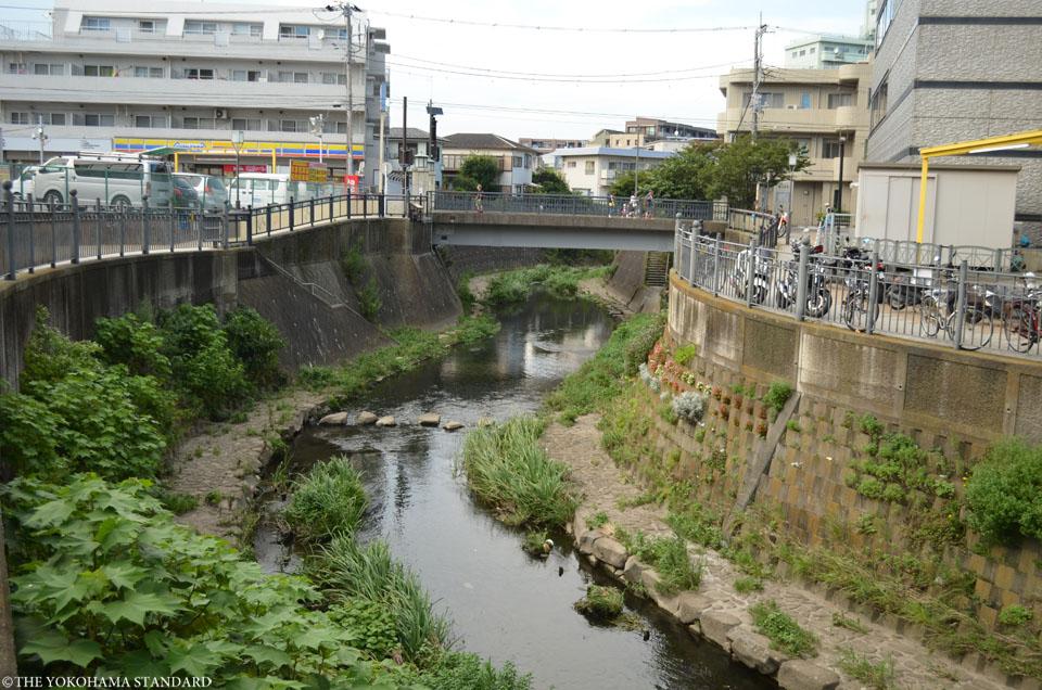 大岡川プロムナード7-THE YOKOHAMA STANDARD