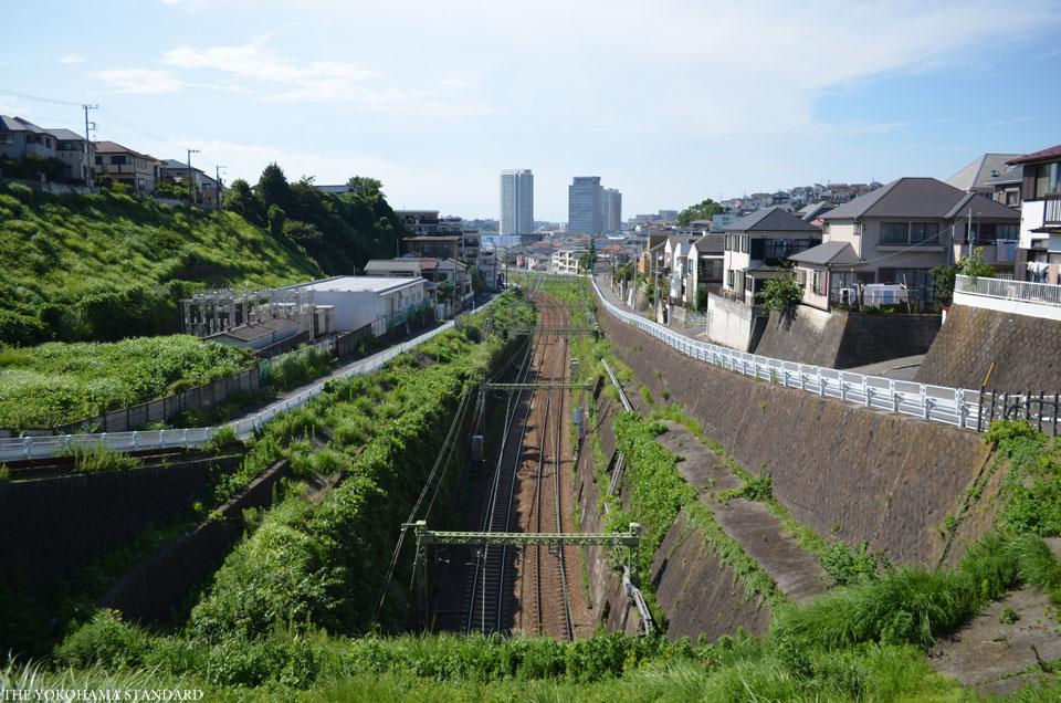 森が丘のトンネル2-THE YOKOHAMA STANDARD