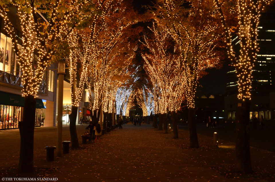 美術の広場イルミネーション2-THE YOKOHAMA STANDARD