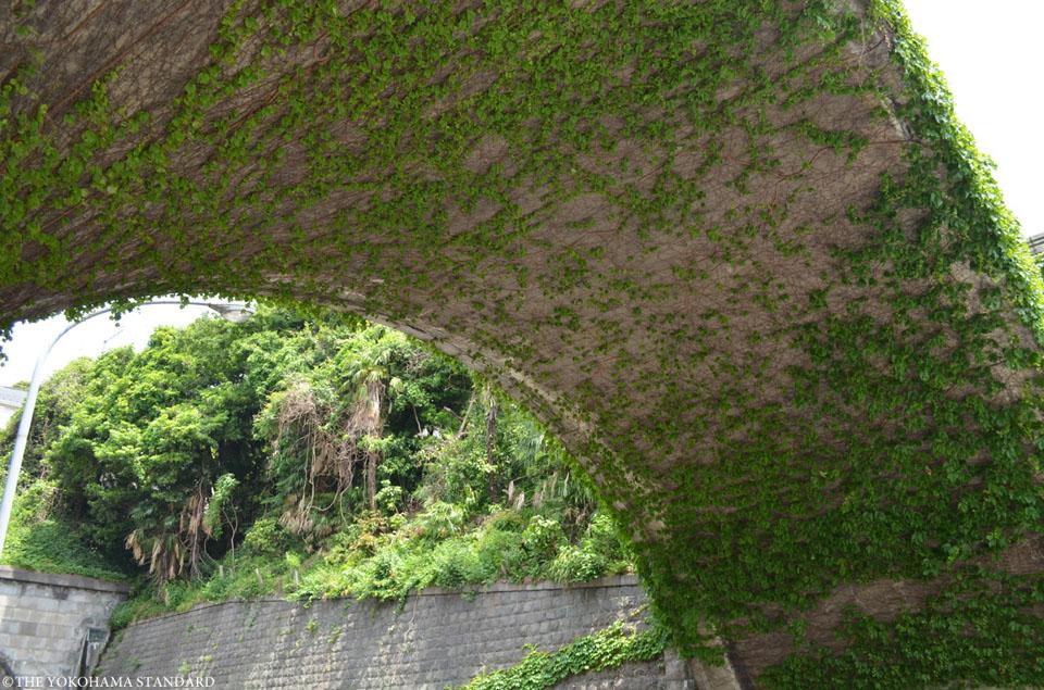 桜道橋1-THE YOKOHAMA STANDARD