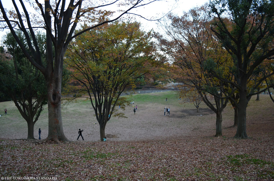 秋の清水ヶ丘公園1-THE YOKOHAMA STANDARD
