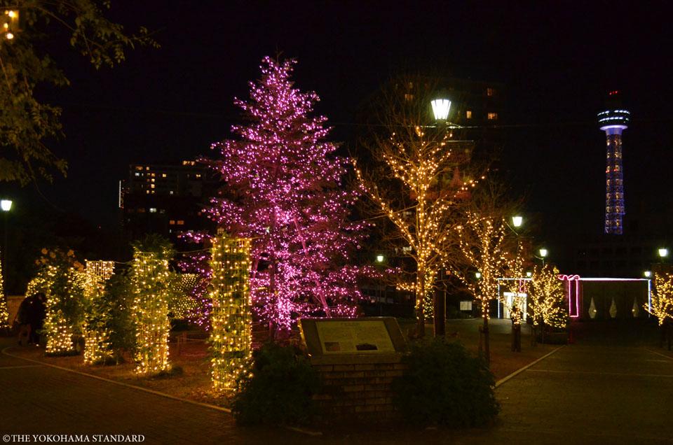 アメリカ山公園のイルミネーション1-THE YOKOHAMA STANDARD