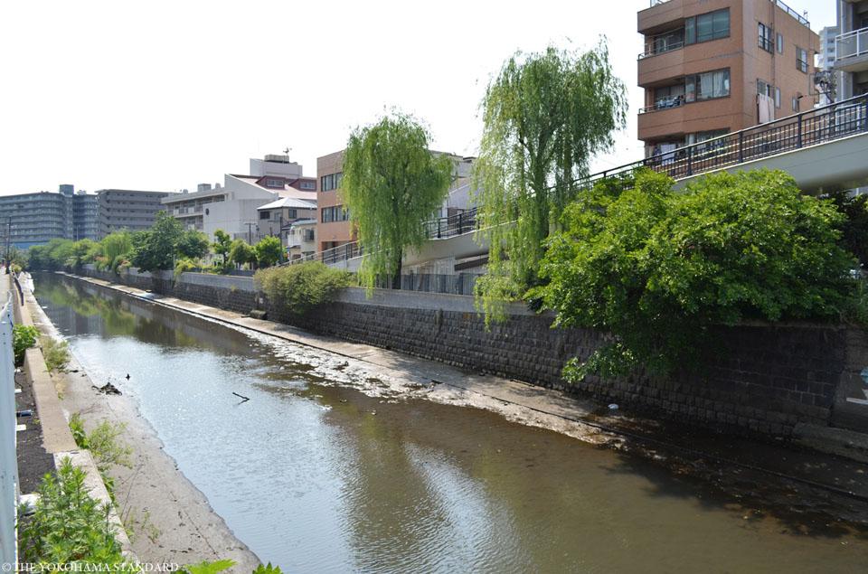 石崎川 西平沼橋付近-THE YOKOHAMA STANDARD