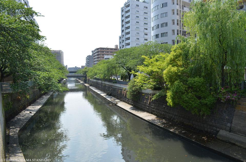 石崎川 石崎川付近3-THE YOKOHAMA STANDARD