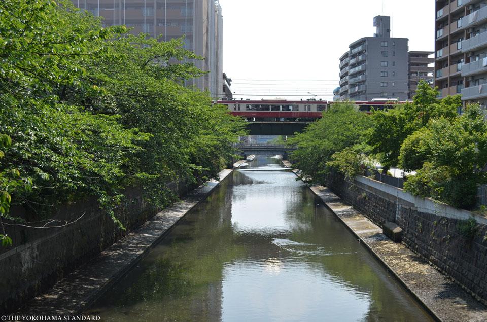 石崎川 梅香崎橋付近-THE YOKOHAMA STANDARD