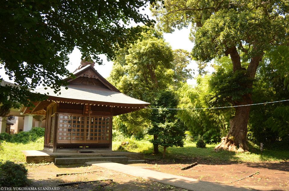 佐婆神社1-THE YOKOHAMA STANDARD