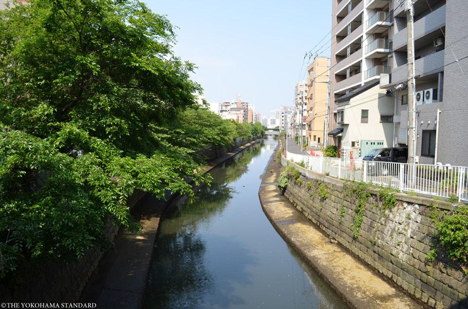 石崎川 扇田橋付近-THE YOKOHAMA STANDARD
