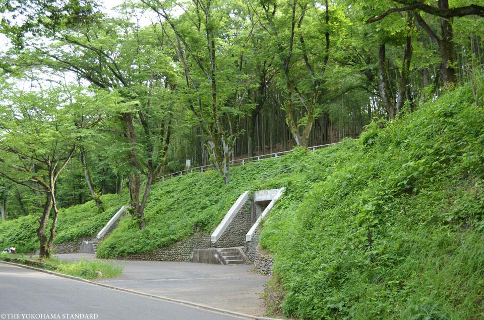 田奈弾薬庫4-左右-THE YOKOHAMA STANDARD