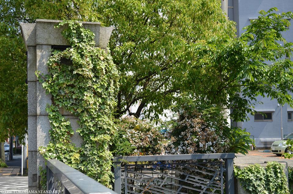 石崎川 高島橋付近2-THE YOKOHAMA STANDARD
