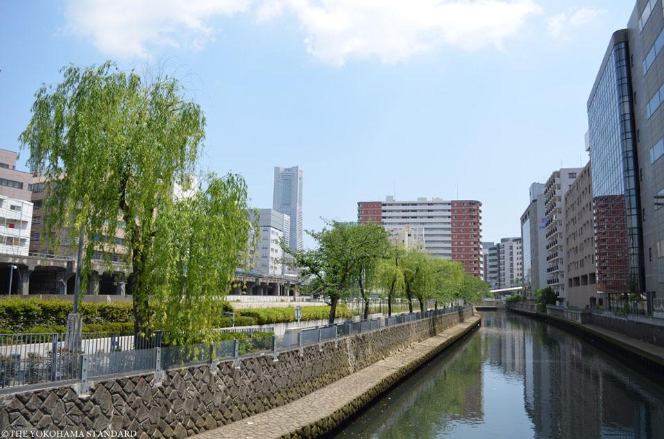 石崎川 浅山橋付近-THE YOKOHAMA STANDARD