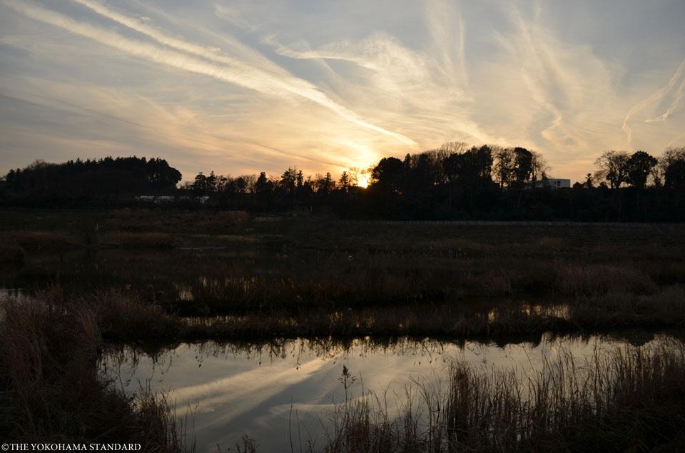 夕暮れの境川遊水地公園