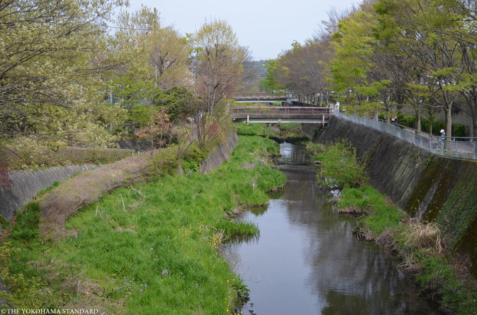 いたち川9-THE YOKOHAMA STANDARD