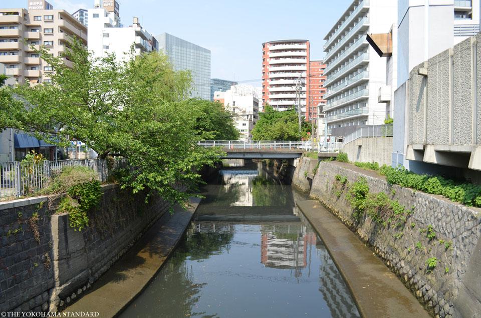 石崎川 石崎川付近2-THE YOKOHAMA STANDARD