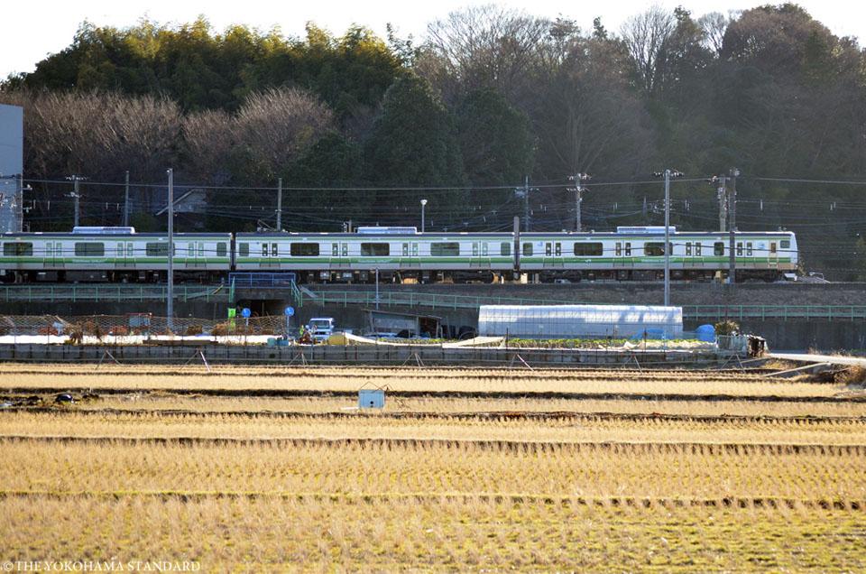冬の田園風景1-THE YOKOHAMA STANDARD
