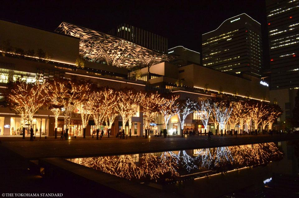 美術の広場イルミネーション-THE YOKOHAMA STANDARD