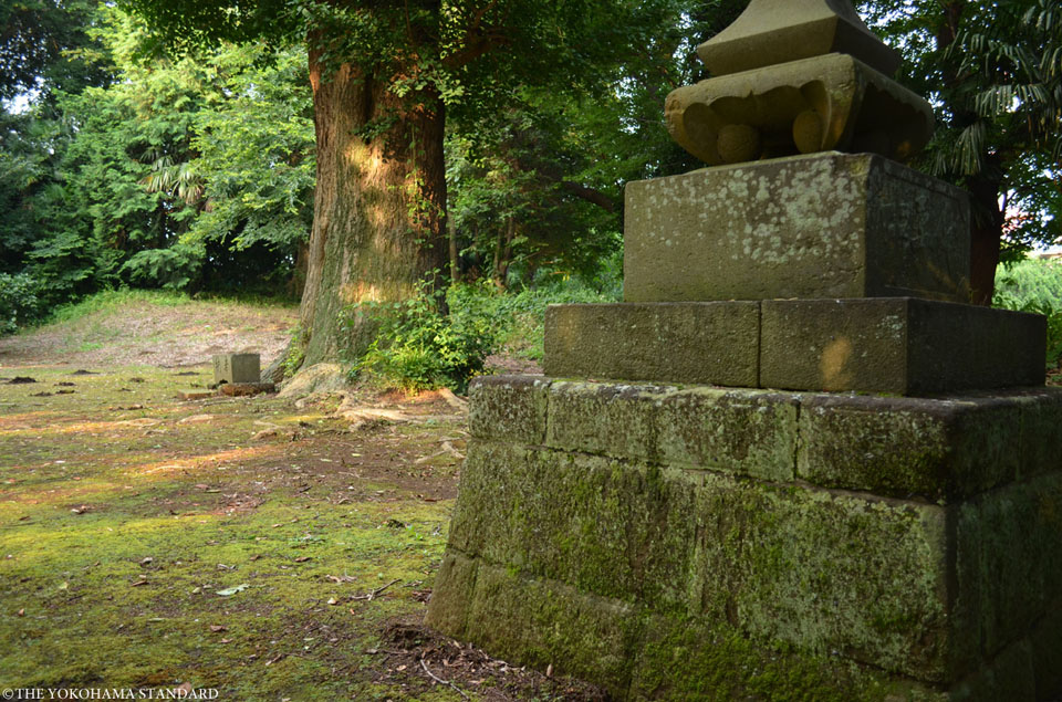 下飯田左馬神社3-THE YOKOHAMA STANDARD