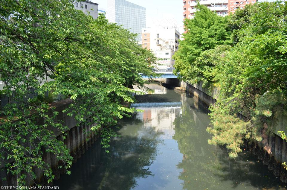 石崎川 敷島橋付近1-THE YOKOHAMA STANDARD