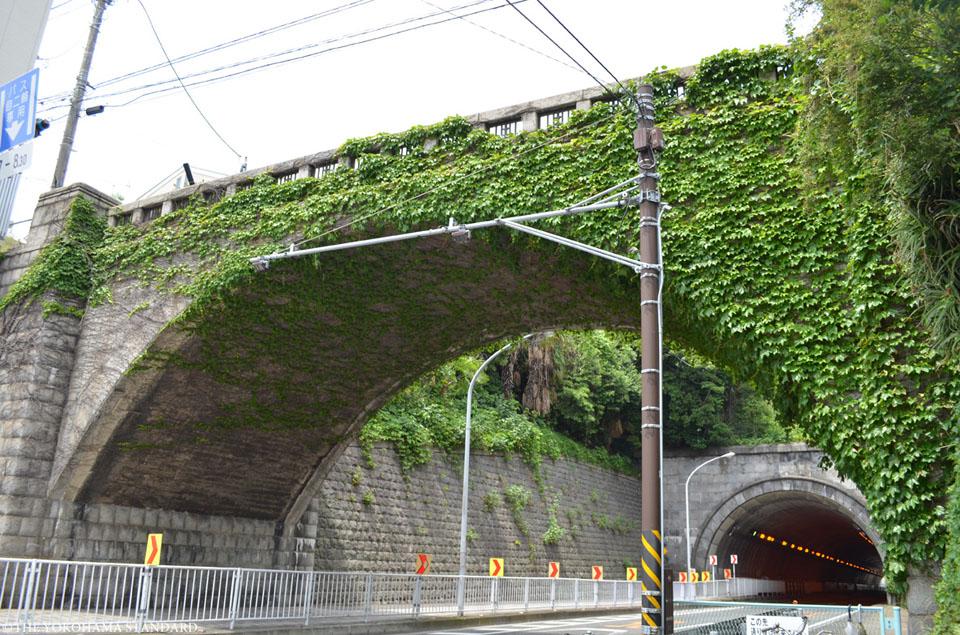 桜道橋3-THE YOKOHAMA STANDARD
