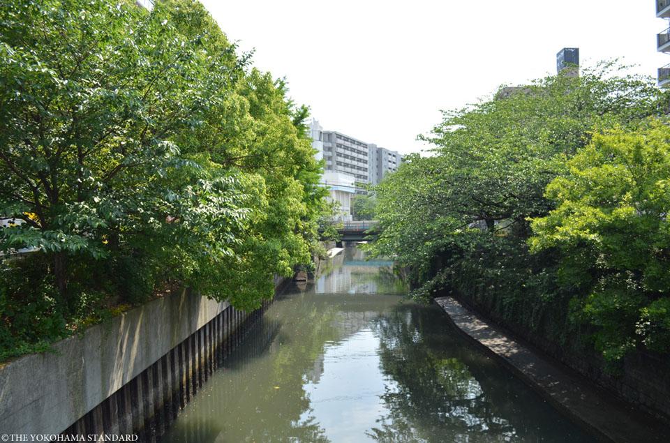 石崎川 高島橋付近1-THE YOKOHAMA STANDARD