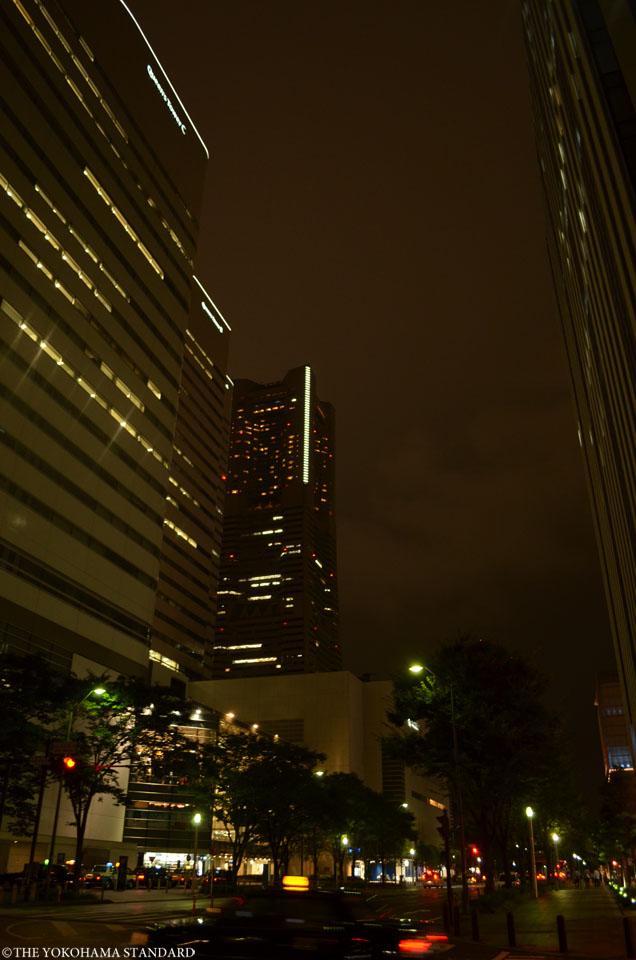 みなとみらい夜のけやき通り-THE YOKOHAMA STANDARD