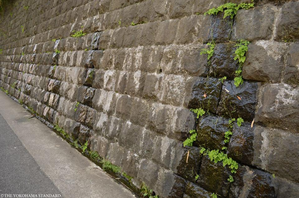 清水坂と打越の霊泉2-THE YOKOHAMA STANDARD