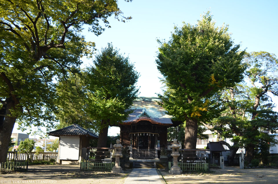 八幡橋八幡神社2-THE YOKOHAMA STANDARD