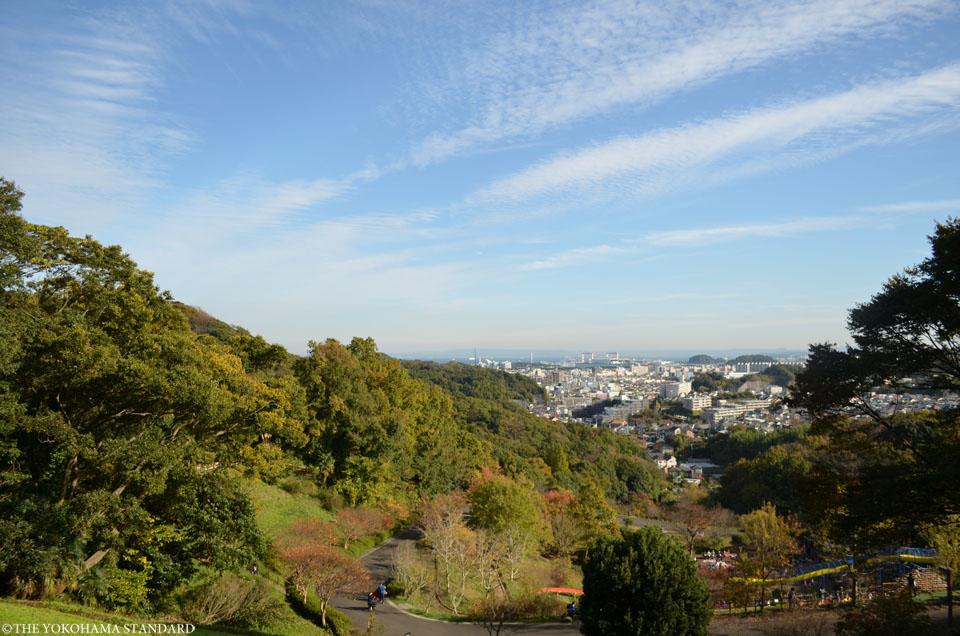 秋の金沢自然公園16-THE YOKOHAMA STANDARDブラフ