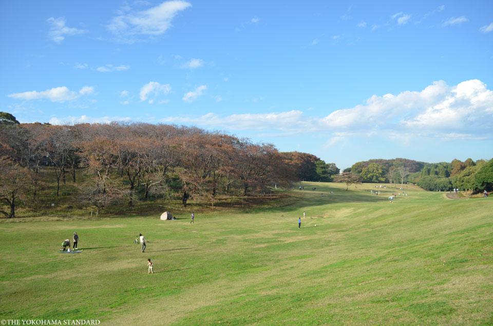 秋の根岸森林公園3-THE YOKOHAMA STANDARD