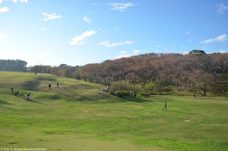 秋の根岸森林公園2-THE YOKOHAMA STANDARD