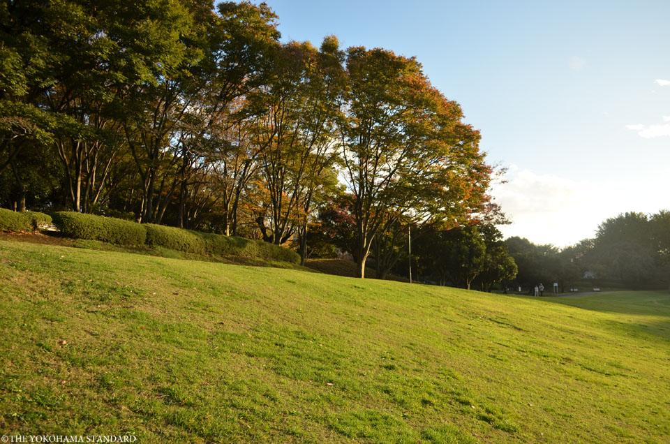 秋の根岸森林公園13-THE YOKOHAMA STANDARD