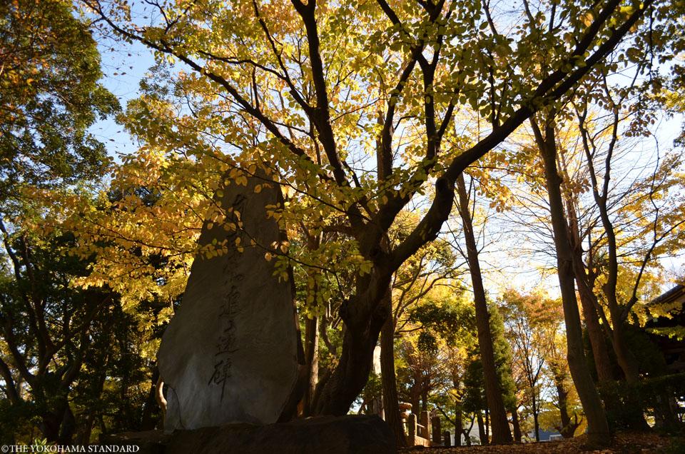總持寺の紅葉2015年4-THE YOKOHAMA STANDARD