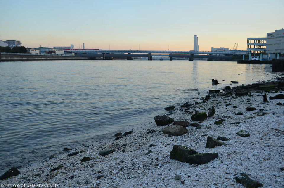 鶴見川の河口10-THE YOKOHAMA STANDARD