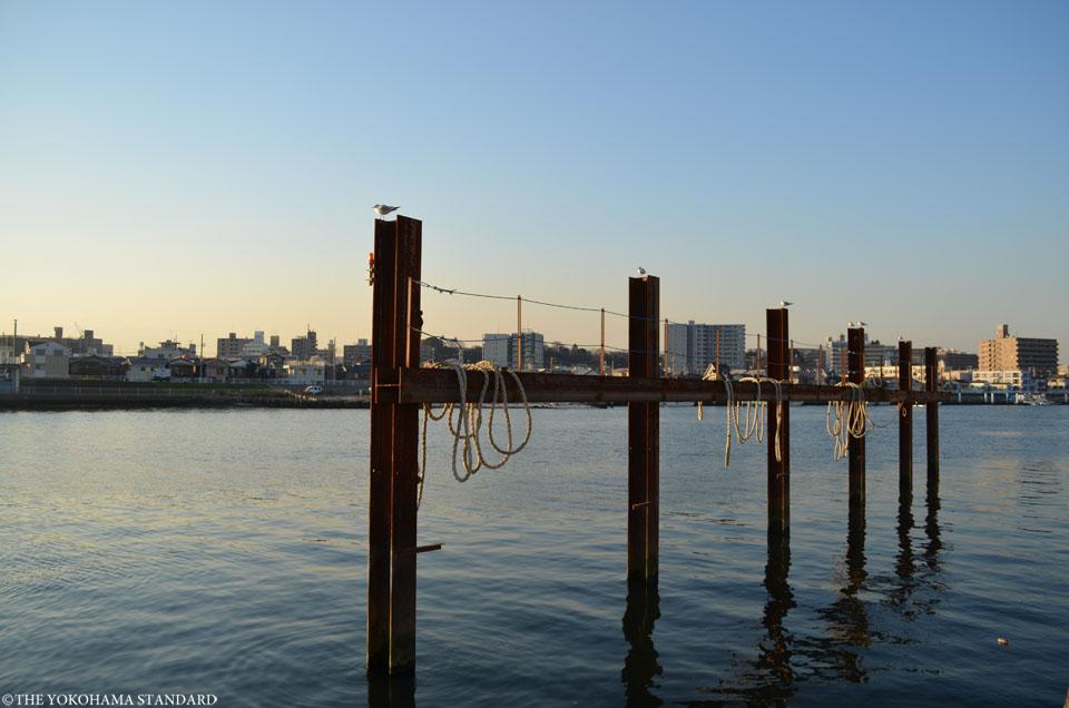 鶴見川の河口5-THE YOKOHAMA STANDARD