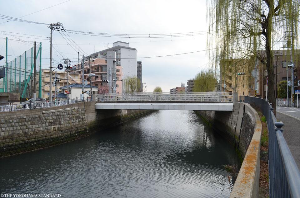 新田間川11-THE YOKOHAMA STANDARD
