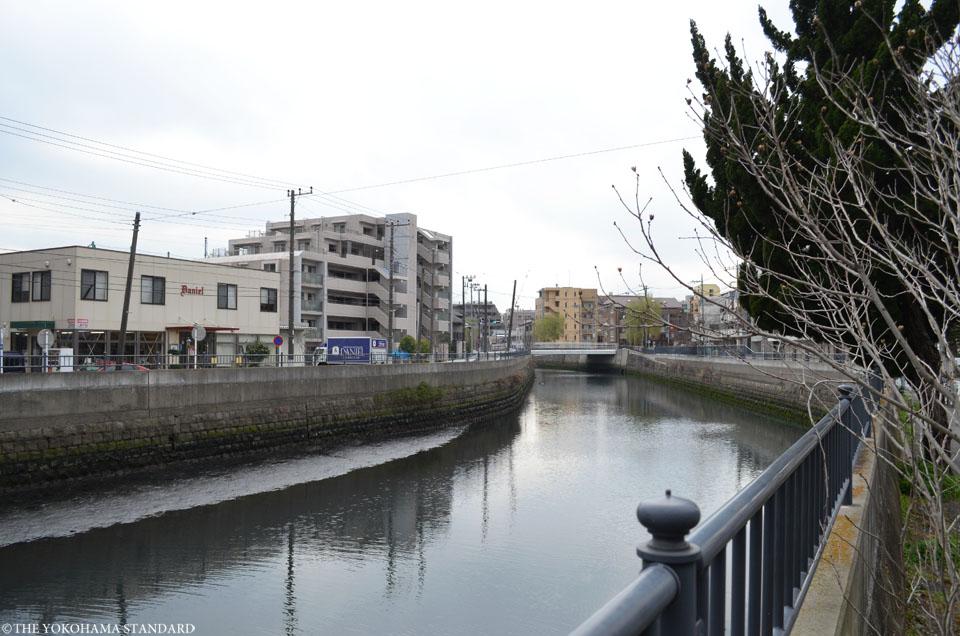 新田間川9-THE YOKOHAMA STANDARD