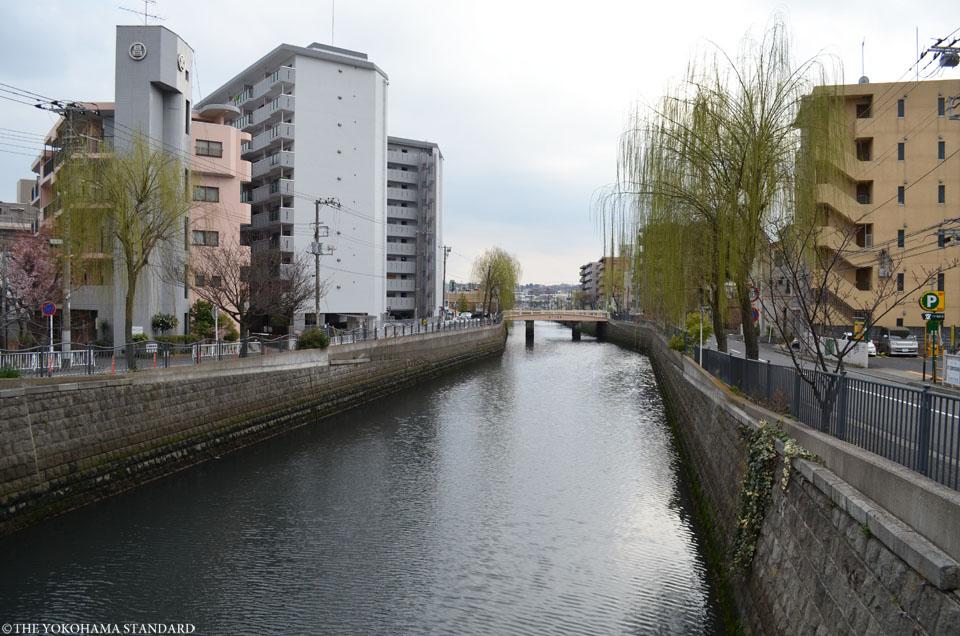新田間川12-THE YOKOHAMA STANDARD