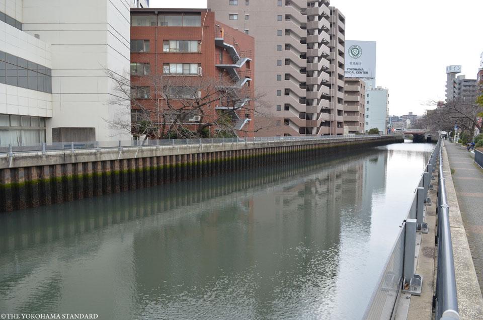 新田間川4-THE YOKOHAMA STANDARD
