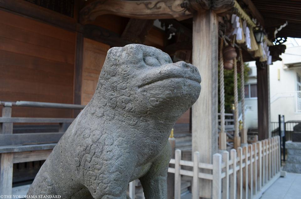 杉田八幡神社の狛犬4-THE YOKOHAMA STANDARD