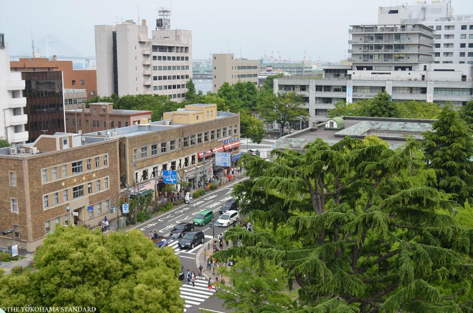 新緑の日本大通り4-THE YOKOHAMA STANDARD