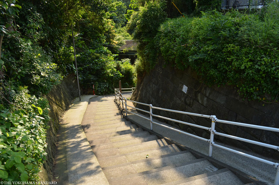 狸坂1-THE YOKOHAMA STANDARD