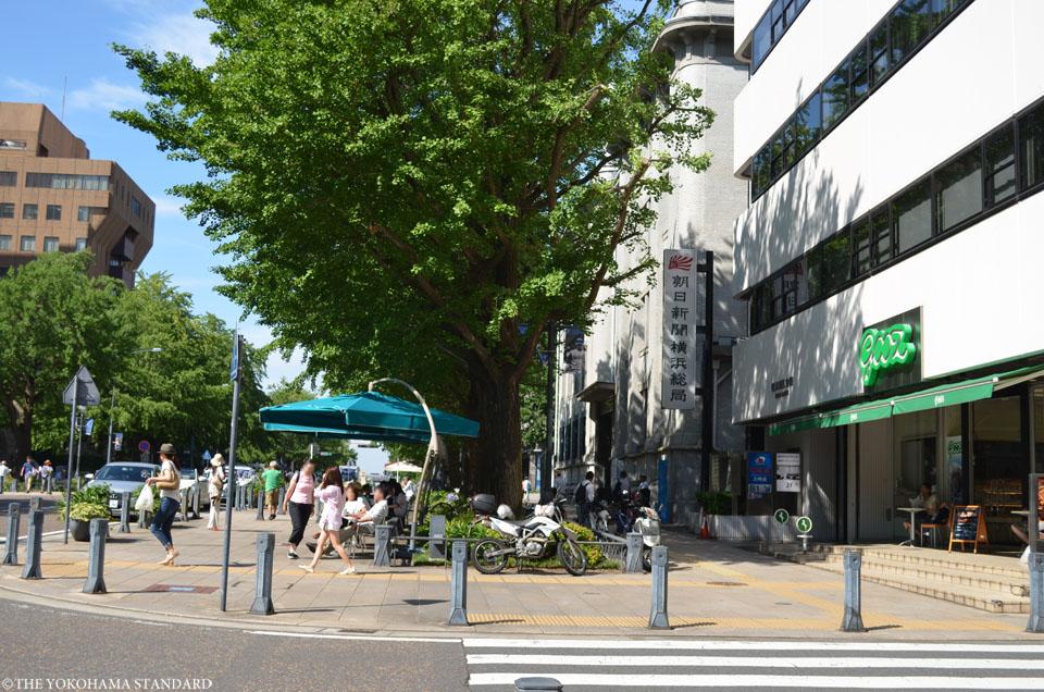 横浜の通り・日本大通り7-THE YOKOHAMA STANDARD
