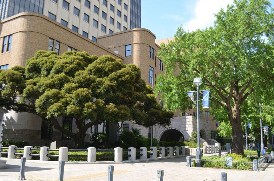 横浜の通り・日本大通り5-THE YOKOHAMA STANDARD