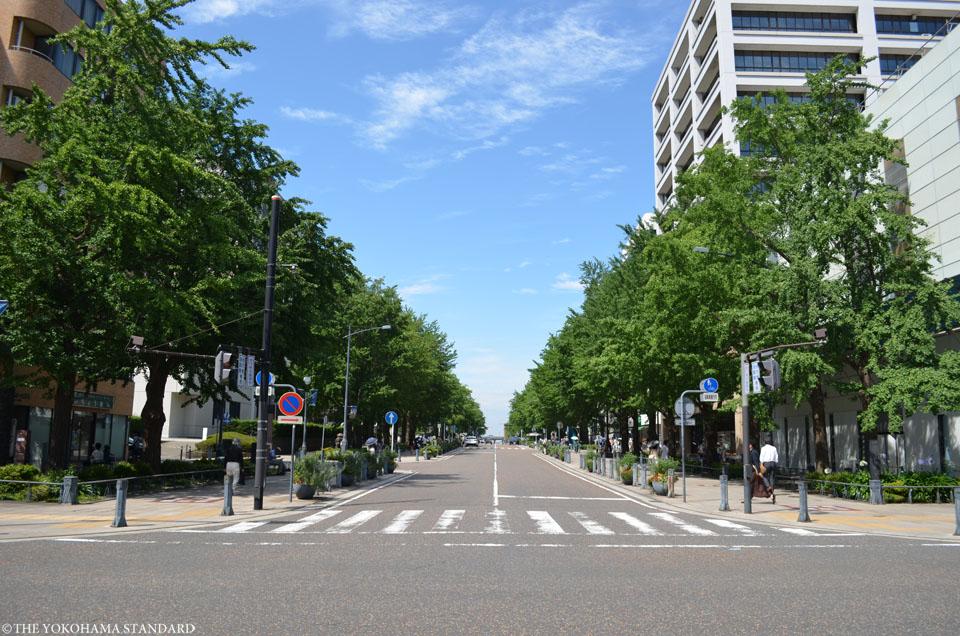 横浜の通り・日本大通り2-THE YOKOHAMA STANDARD
