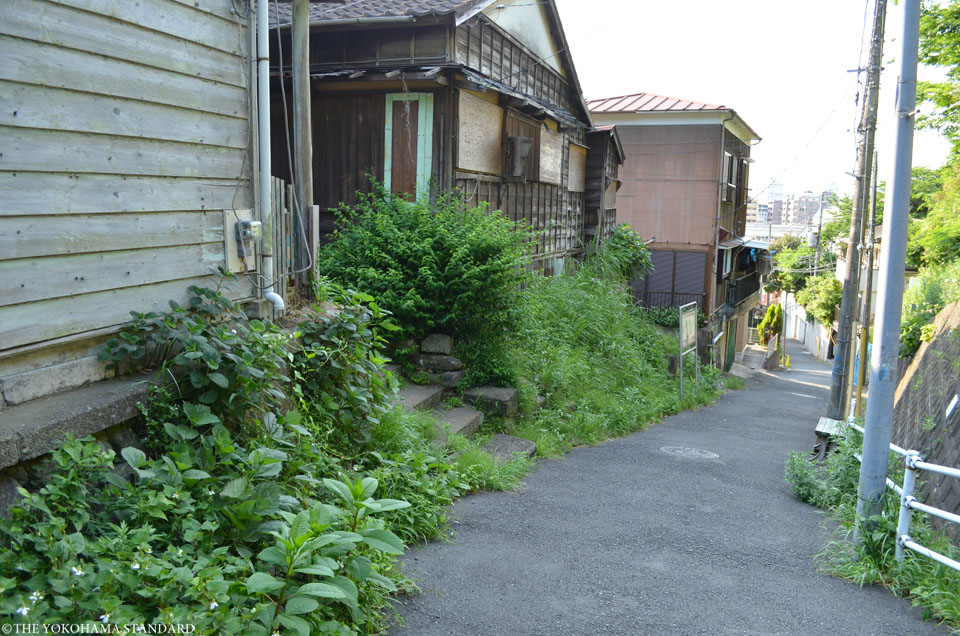 狸坂8-THE YOKOHAMA STANDARD