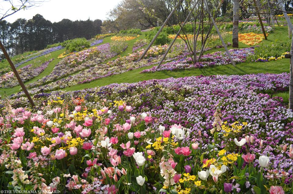 里山ガーデン13-THE YOKOHAMA STANDARD