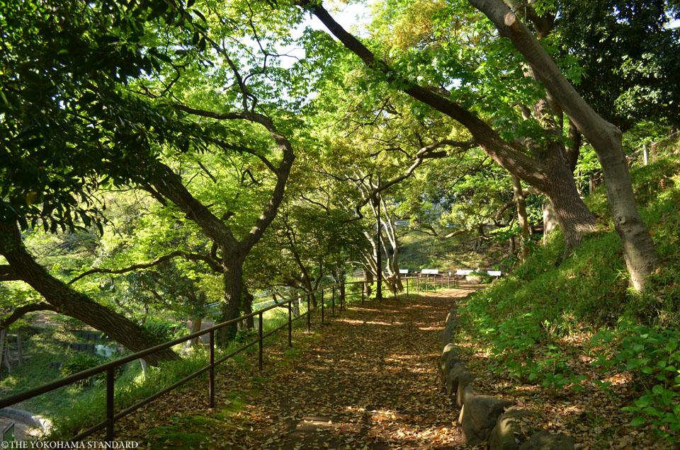 山手公園14-THE YOKOHAMA STANDARD