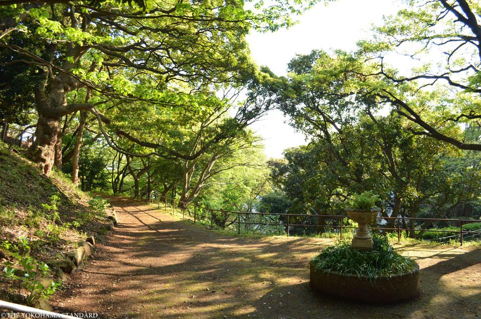 山手公園28-THE YOKOHAMA STANDARD